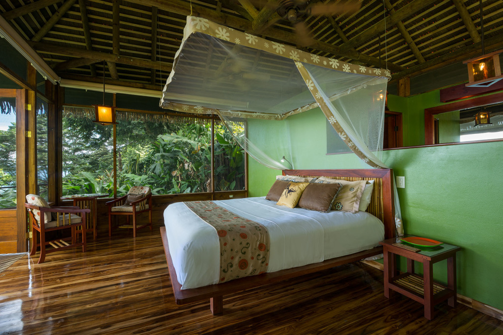 At Lapa Rios, the tropical rainforest is right outside of your room. Photo courtesy of Lapa Rios.