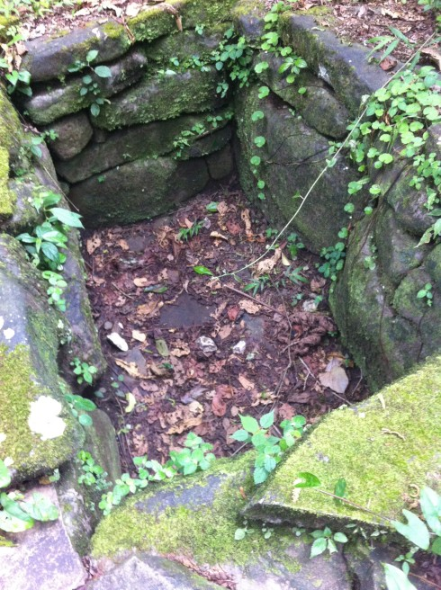 An empty tomb found at Guayabo.