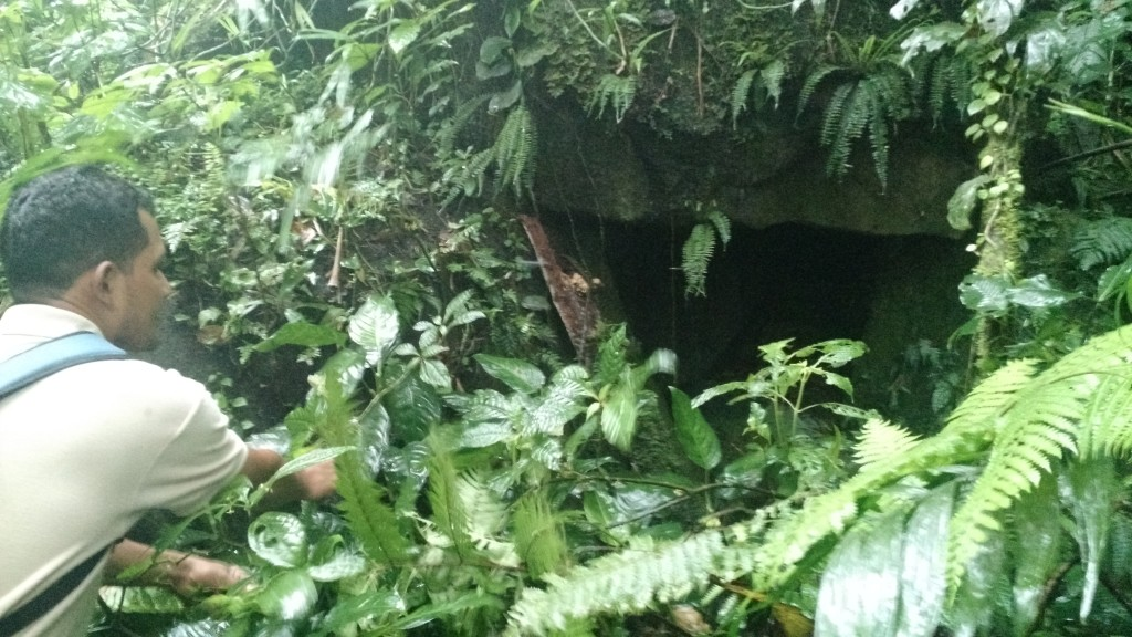This puma cave has been deserted since 2000, when the trail was first made.