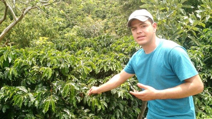 Enrique Navarro Jr. helps cultivate one of Costa Rica's finest coffees.
