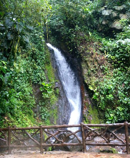 The park is home to several waterfalls.