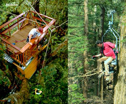 How to get to a treehouse: an old method and a new one.