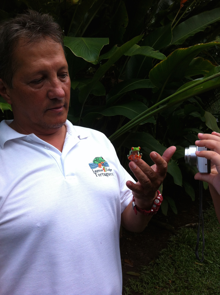 Tour guide Diego Castaing introduces a red-eyed tree frog he calls José.