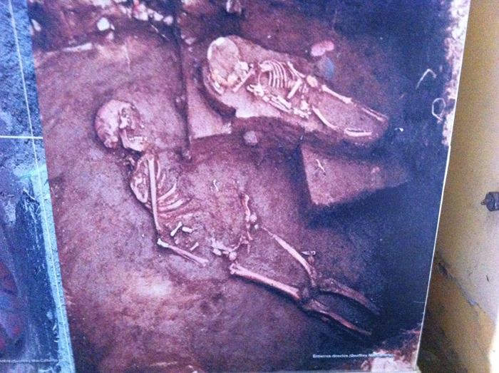 Photos of early human bones discovered in the Rivas area.