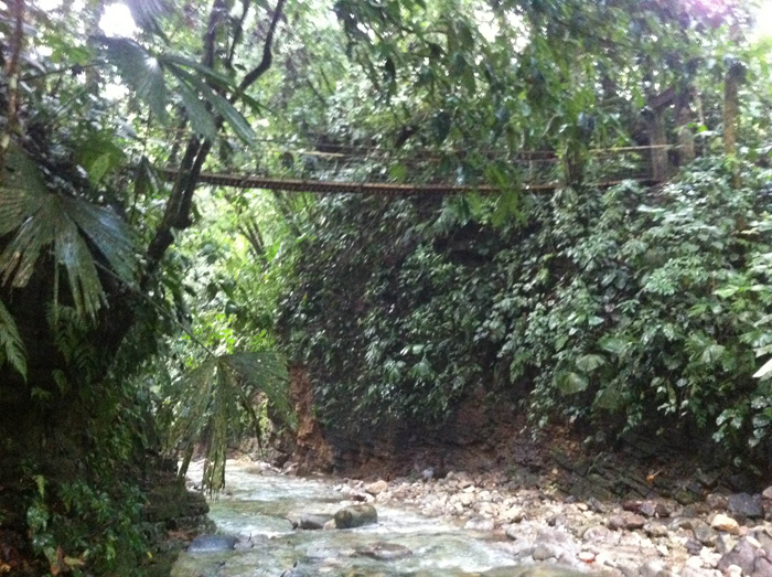 Hanging bridge over the Bellavista River.