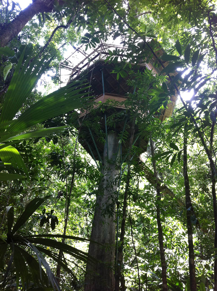 Castillo Mastate, the tallest treehouse at Finca Bellavista, is suspended 90 feet in the air.