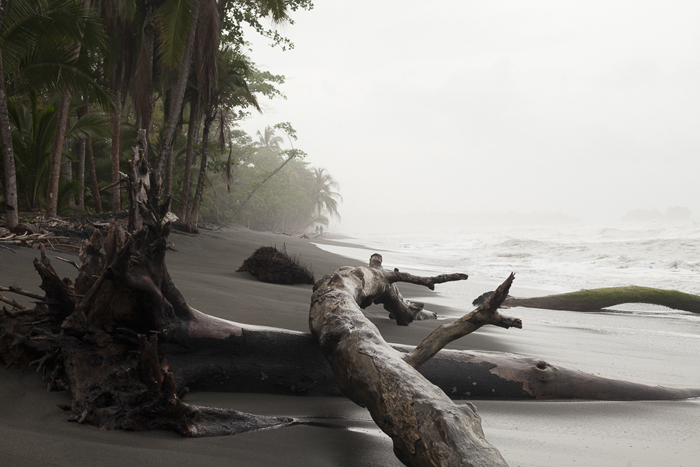 Black sand meets mist and jungle in the wilderness of Gandoca.