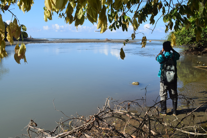 Our excellent guide, Manuel Carranza, scouts for crocs on the Río Claro.