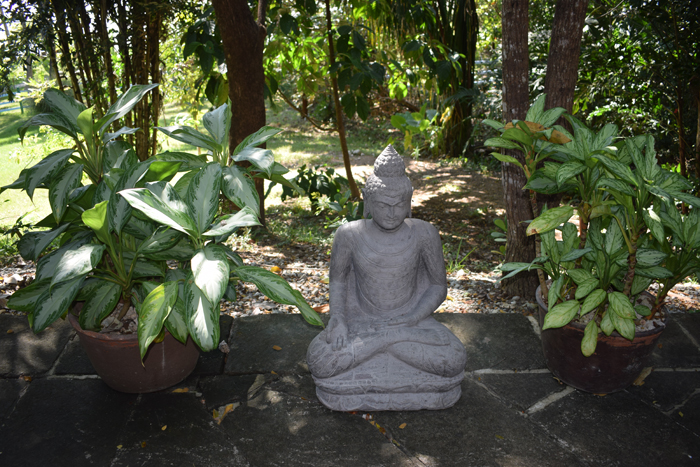 A Buddha at the Blue Spirit.