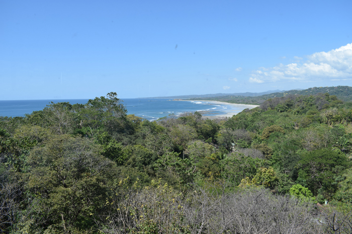 View of Playa Guiones from the Blue Spirit.