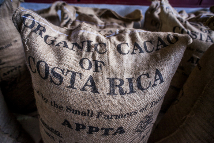 Organic Cacao of Costa Rica