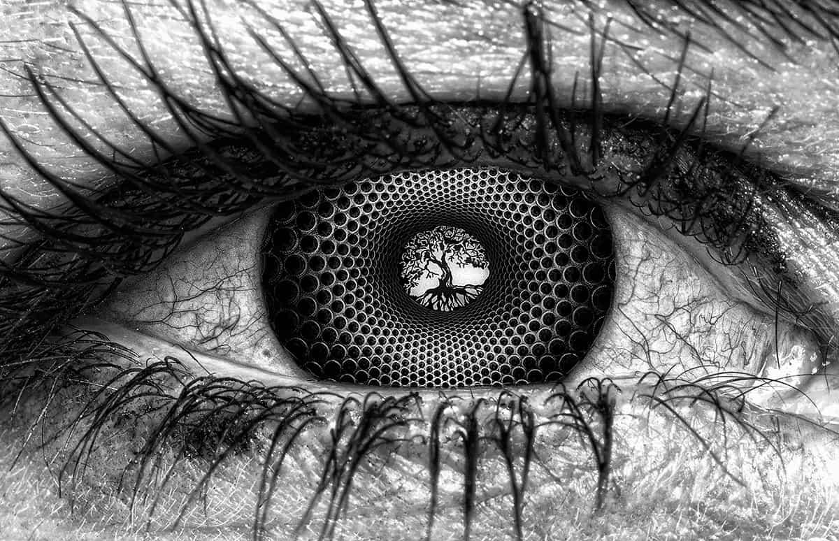 eyeball on iboga trip