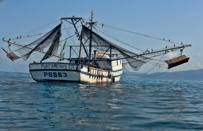 Costa Rica shrimp trawling