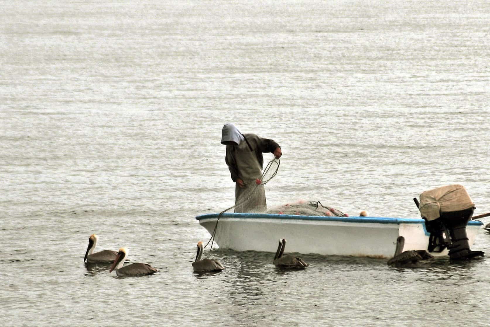 Gulf of Nicoya fishing.