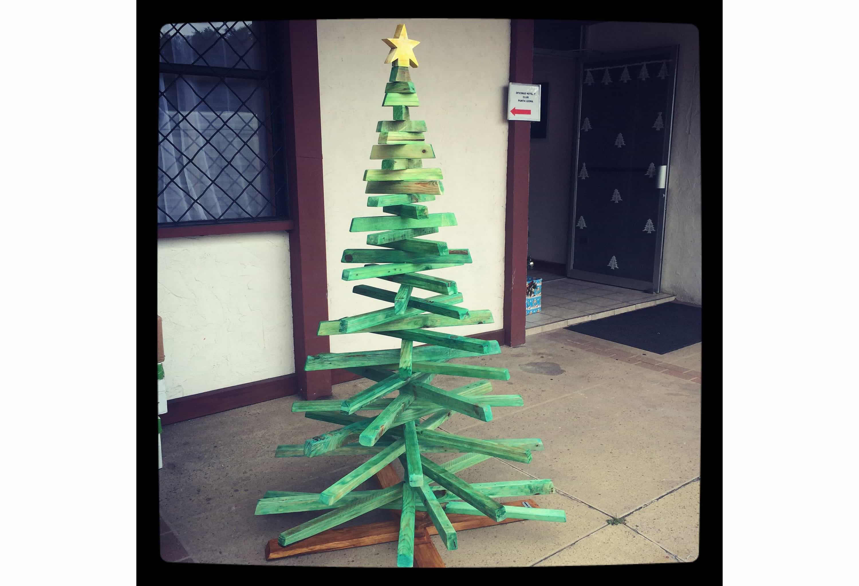 Finding A Green Costa Rican Christmas Tree