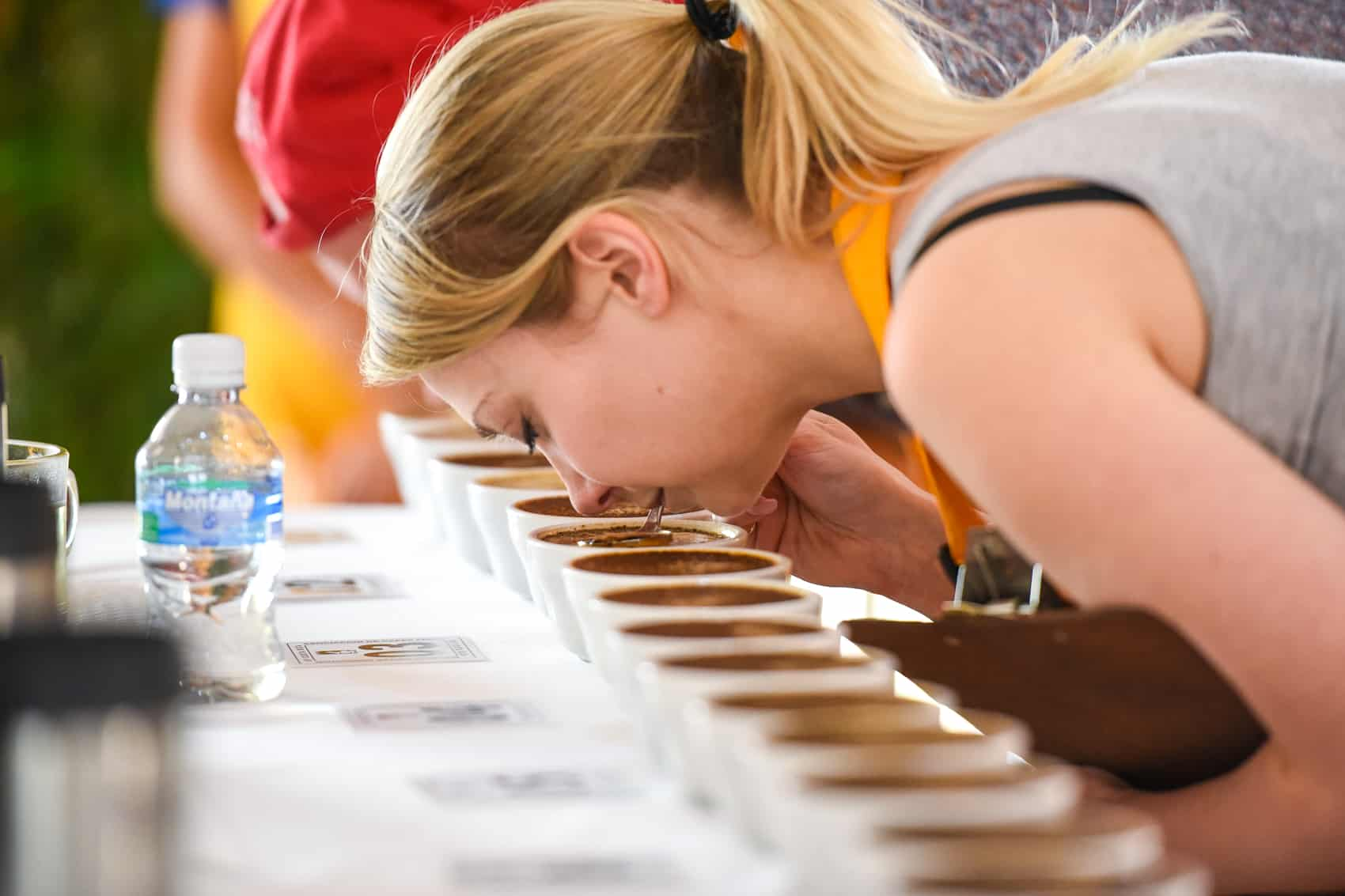 A judge cupping at the 2015 Cup of Excellence at the Hyndham Hotel in San José, May 13, 2015.