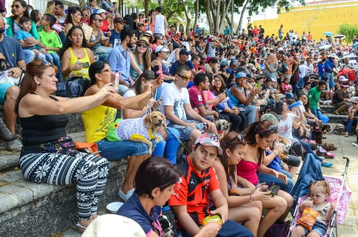 Thousands gathered at the Plaza de la Democracia to enjoy the music and different activities at the 7th Match Against Animal Abuse in San José.