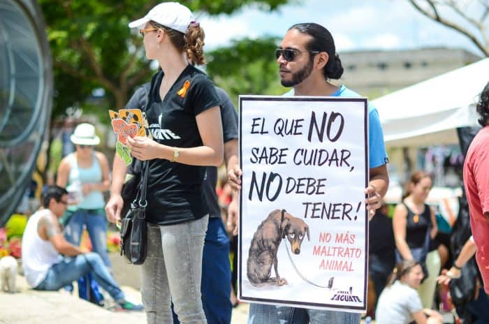 """""""He who doesn't know how to care (for an animal), shouldn't have one. No more animal abuse"""" reads a sign at the 7th National March Against Animal Abuse."""
