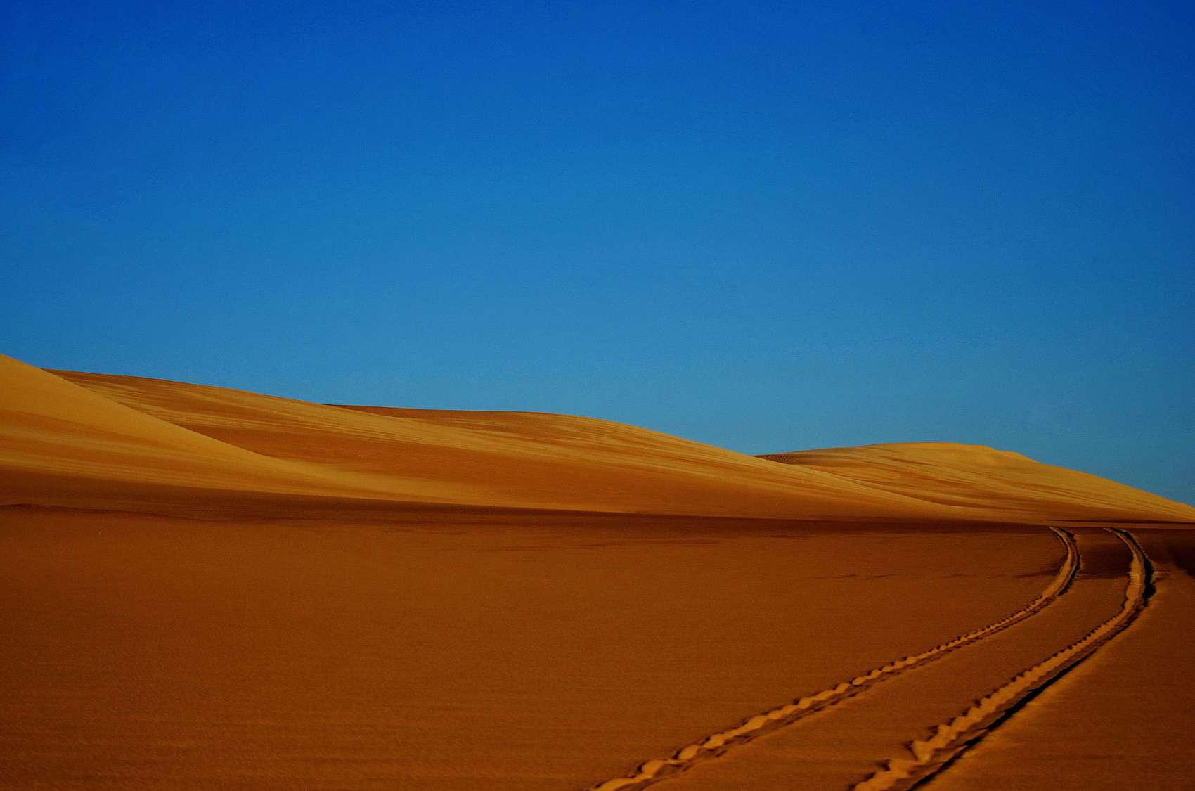 Egypt's Western Desert.