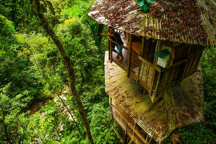 Taking in the view from a treehouse balcony at Finca Bellavista.