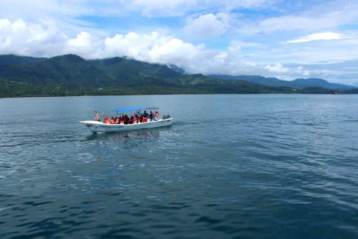 Sea Shepherd whale watchers