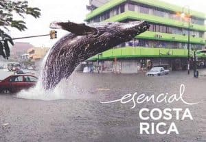 Costa Rica memes: Esencial Costa Rica