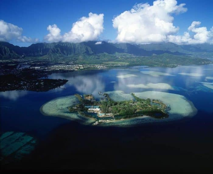 reefs around Coconut Island, Hawaii