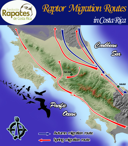 Map of raptor migration routes in Costa Rica