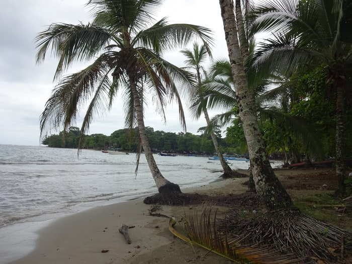 View of Puerto Viejo beach.