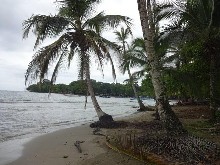 View of Puerto Viejo beach.