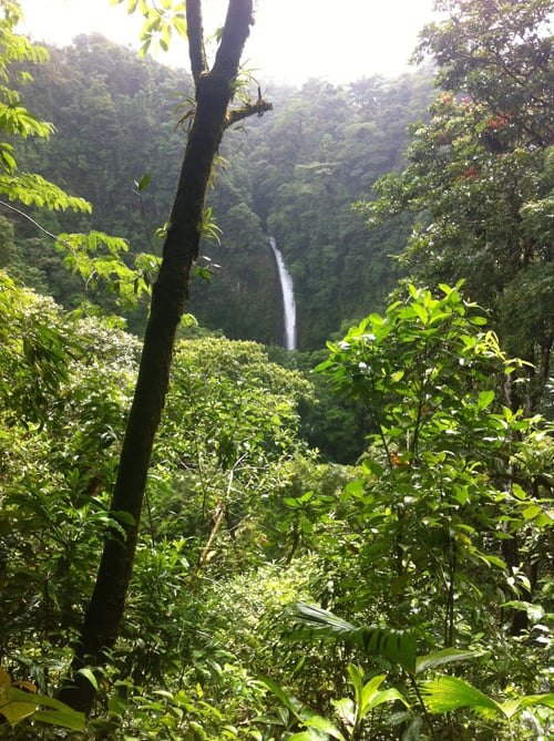 La Fortuna Waterfall from a distance.