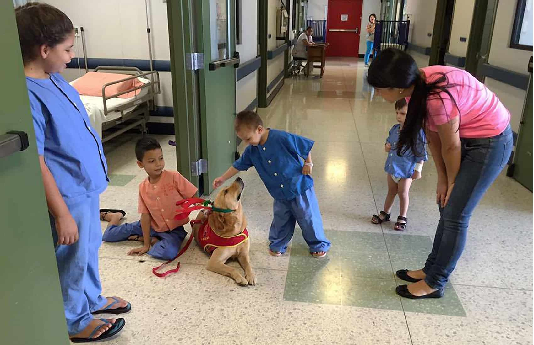 Dog therapy at Costa Rica's San Vicente de Paul Hospital