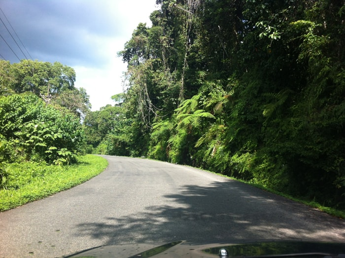 Road from Chacarita to Puerto Jiménez.