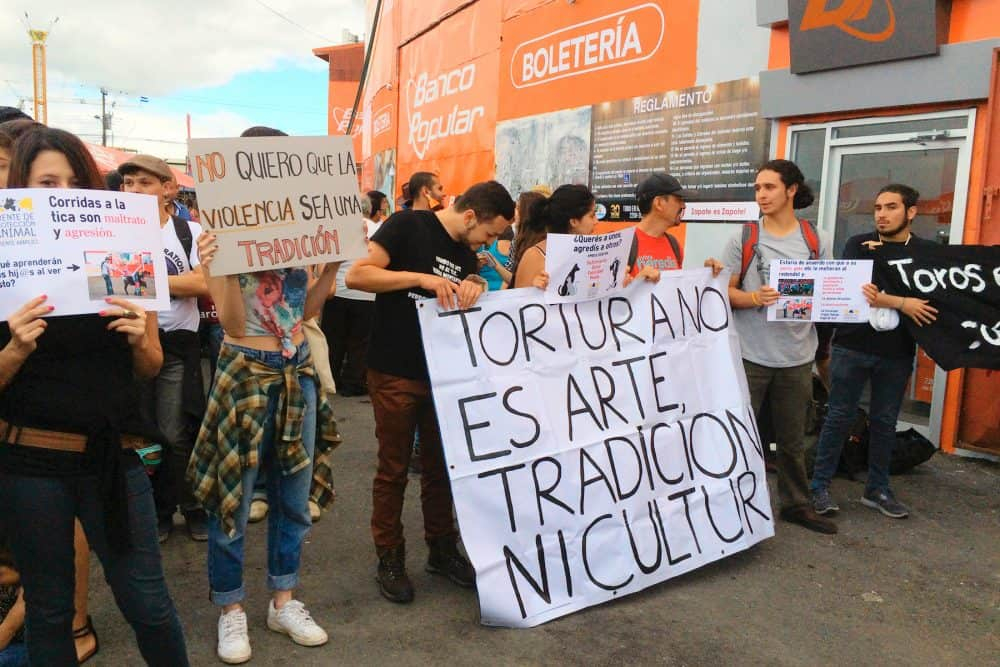Demonstration against Tico-style bullfights. Dec. 25 2015