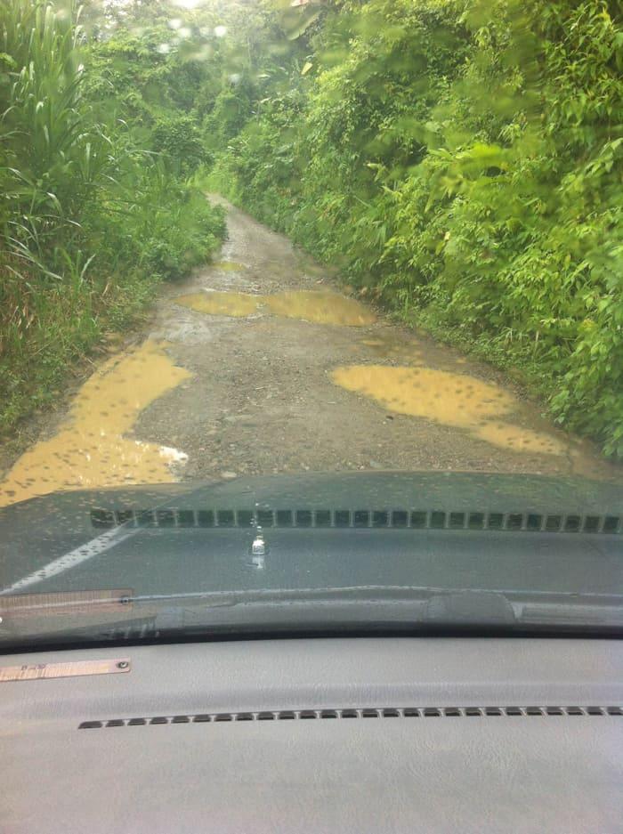 The road to Selva Bananito.