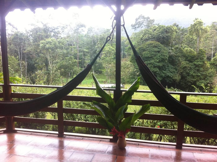 Hammocks, flowers and rain forest view on the veranda of a bungalow at Selva Bananito.