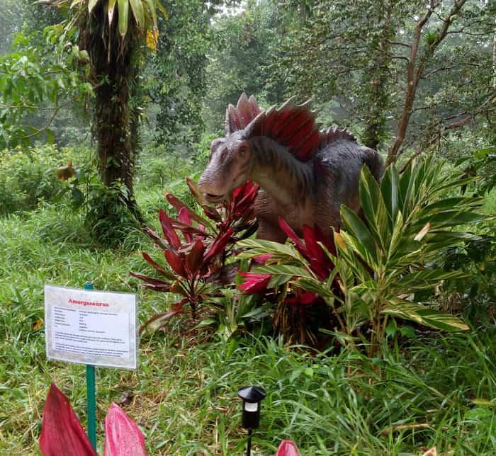 Amargasaurus.