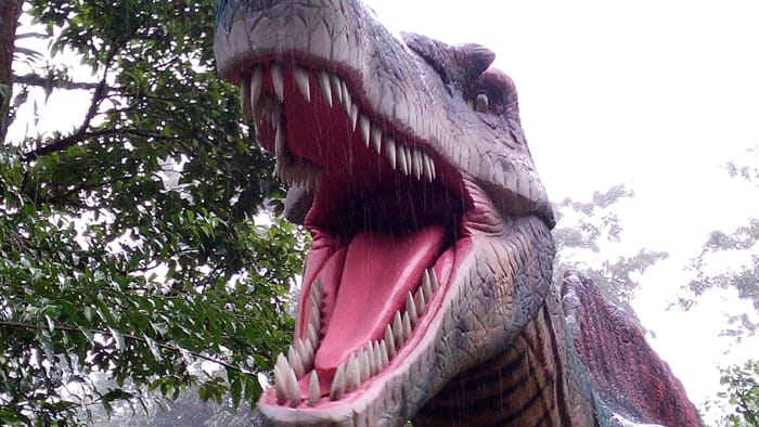 Tyrannosaurus rex: Back in the Cretaceous Period, it's a safe guess that few creatures saw one this close and lived to tell about it.