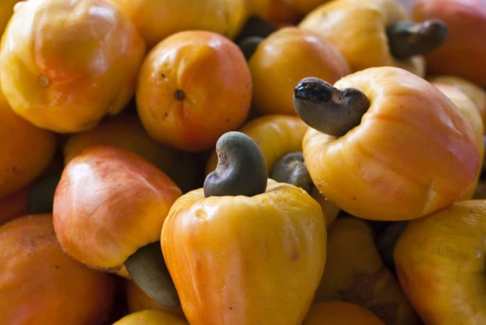 Cashew fruit and seed
