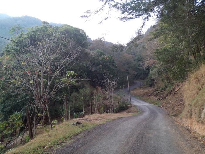 Bird-watching road in front of El Toucanet.