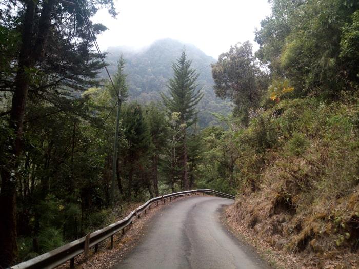 Mendocino County? No, road to San Gerardo de Dota.