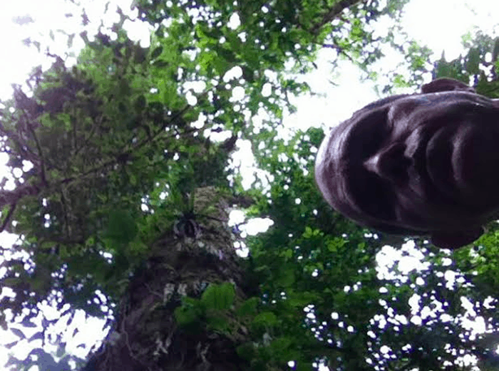 Heart of darkness: Self-portrait with big tree.