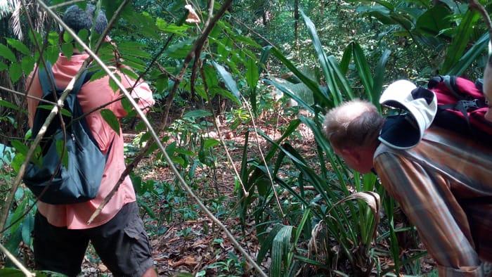 Fernando and Murphy spot an agouti.