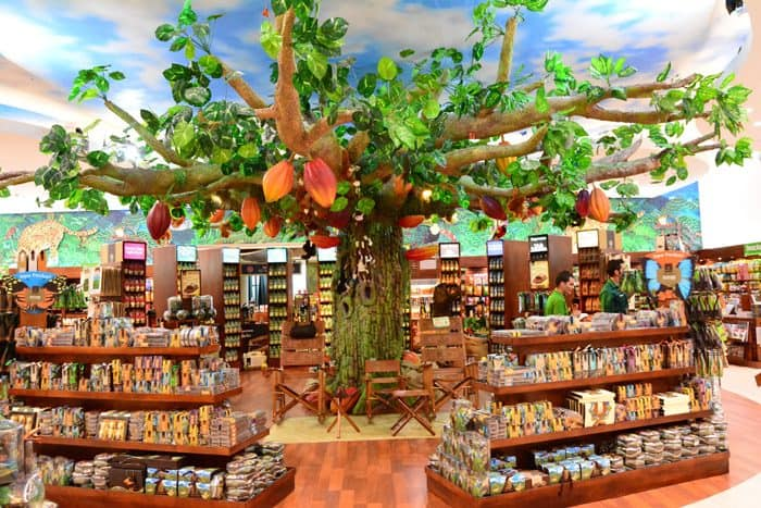 The interior of the main Britt Shop at the Costa Rican airport, with chocolate tree.