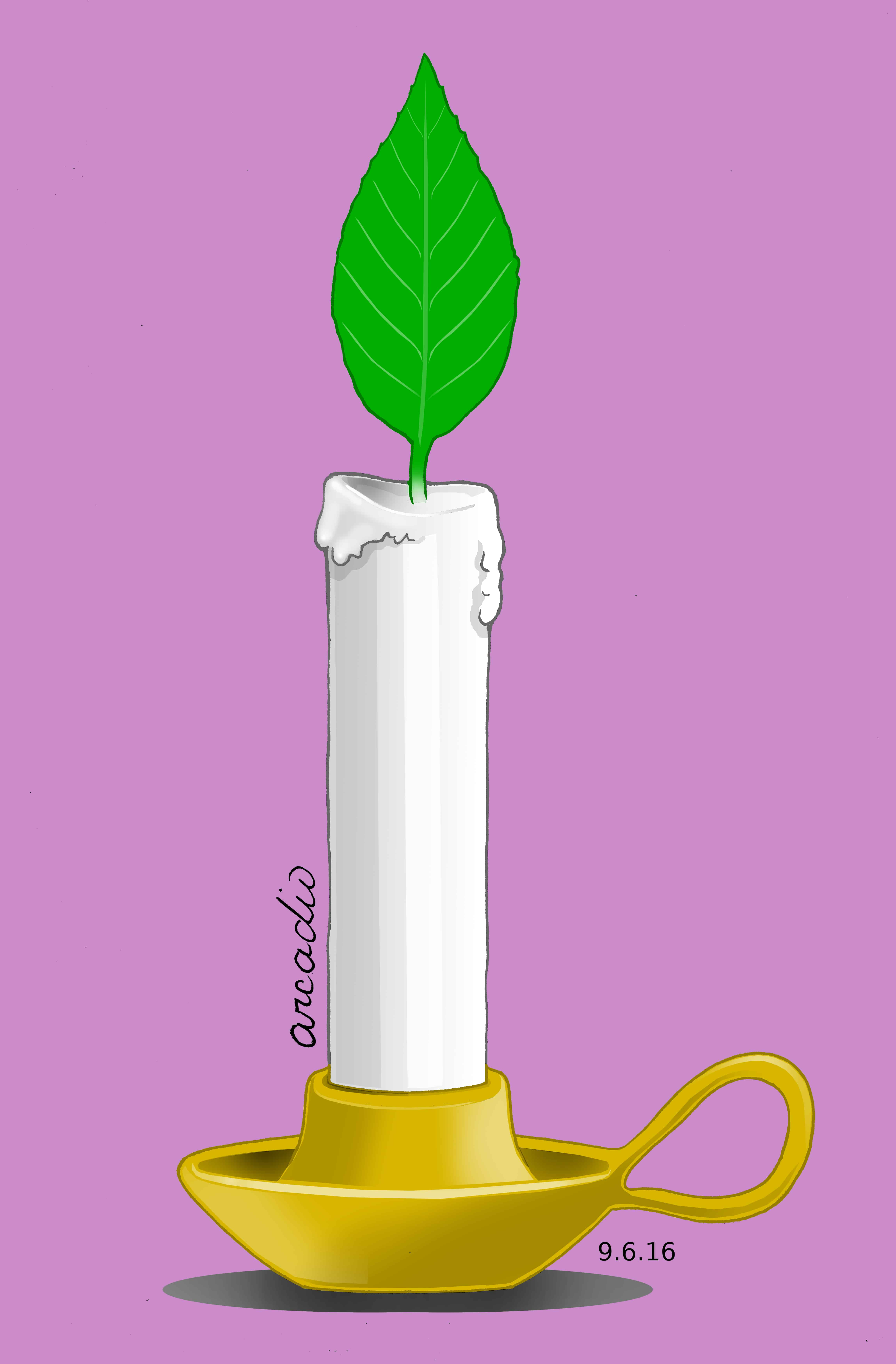 candle with leaf