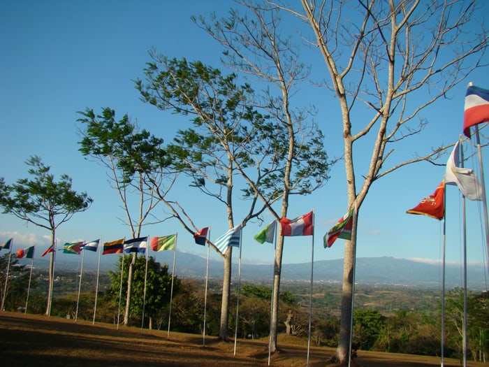 Flags of signatories to the treaty that created the University for Peace.