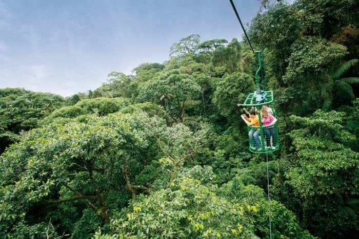 Visitors ride the tram at Rainforest Adventures.