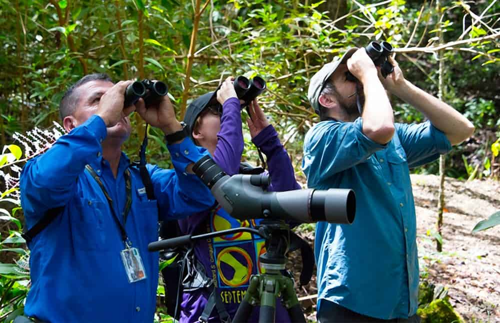 ICT research found that there are 9 million people enrolled in birding associations worldwide and just over 3 million of them travel abroad.
