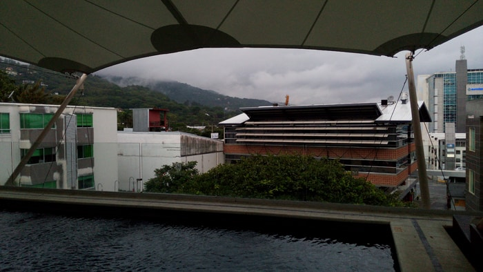 Rooftop pool at the Studio Hotel.