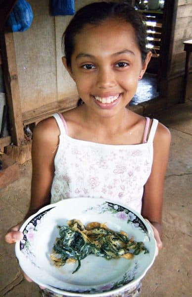 Edible seaweed farming in Costa Rica
